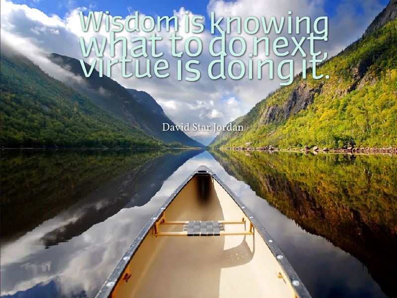 Wisdom is knowing what to do next virtue is doing it