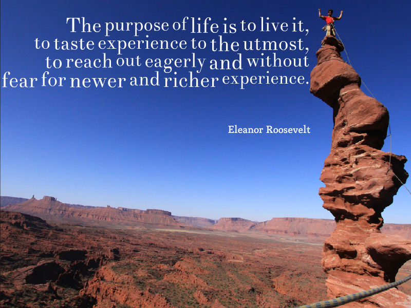 The purpose of life is to live it, to taste experience to the utmost, to reach out eagerly and without fear for newer and richer experience