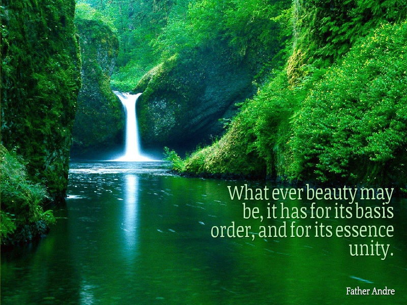 What ever beauty may be it has for its basis order and for its essence unity