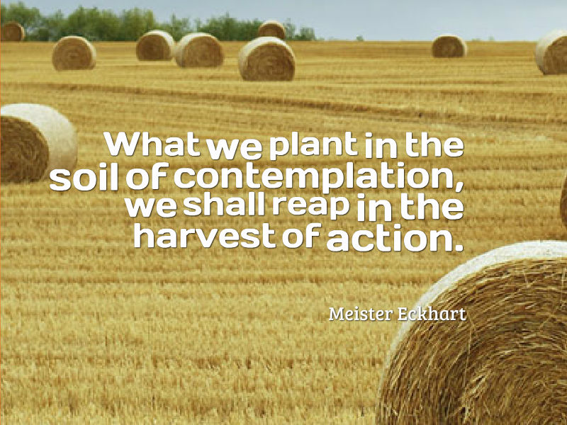 What we plant in the soil of contemplation, we shall reap in the harvest of action