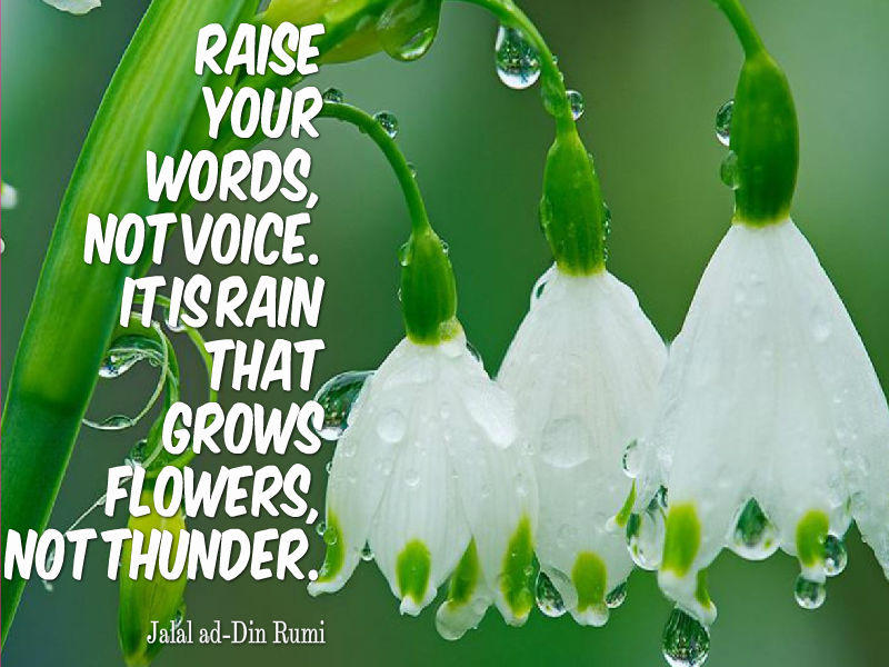 Raise your words, not voice.  It is rain that grows flowers, not thunder