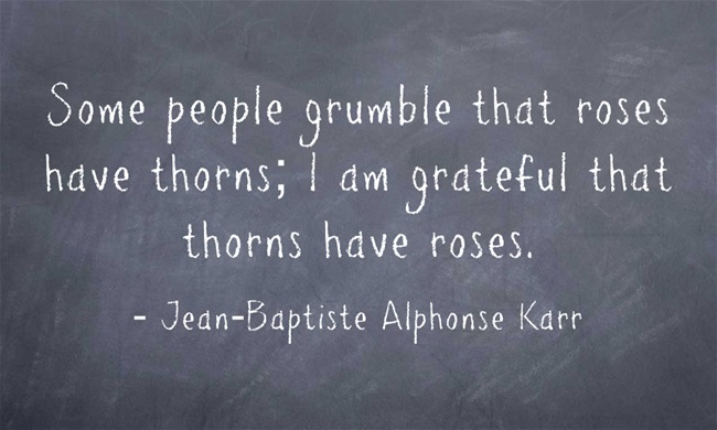 Some people grumble that roses have thorns, I am grateful that thorns have roses