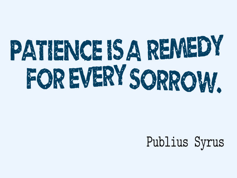 Patience is a remedy for every sorrow