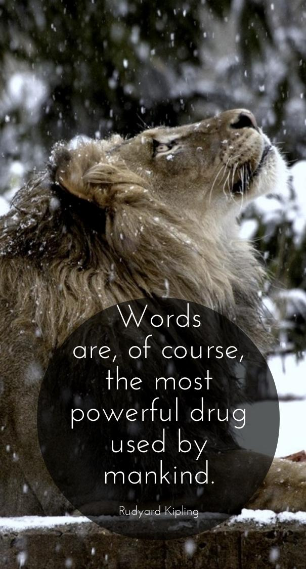 Words are of course, the most powerful drug used by mankind.