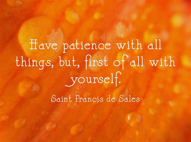 John Adams Quote Patience and Perseverance