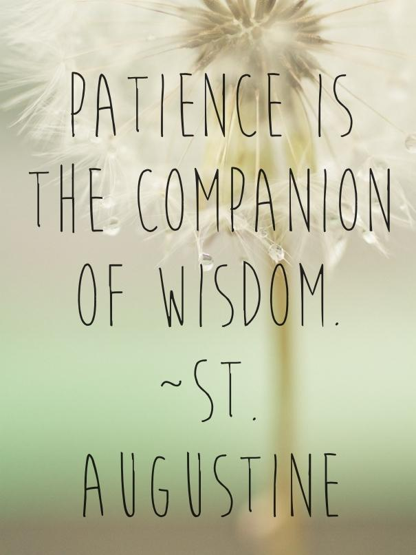 Merveilleux St Augustine Quote About Patience And Wisdom