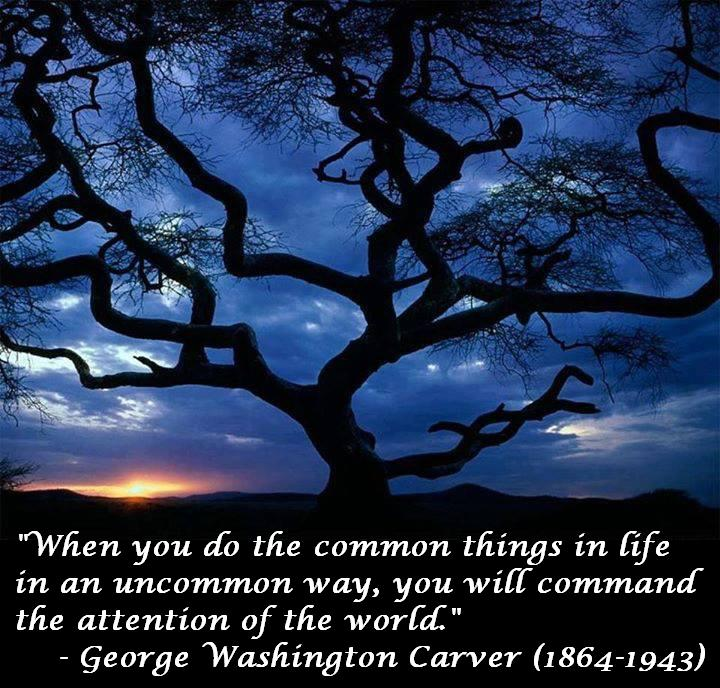 When you do the common things in life in an uncommon way you will command the attention of the world