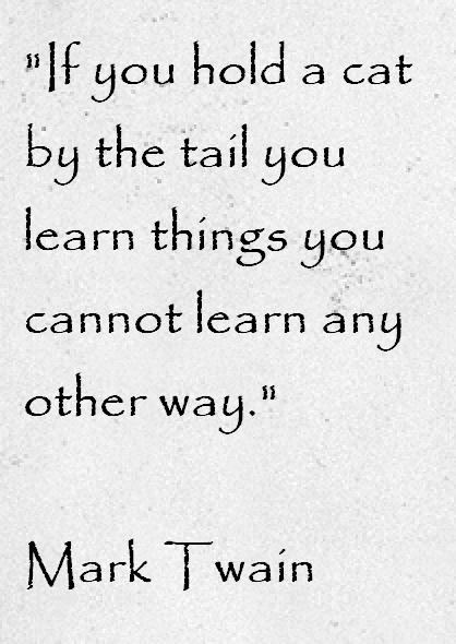Mark-Twain-If-you-hold-a-cat-by-the-tail - Quote For The Day - Quotable Quotes