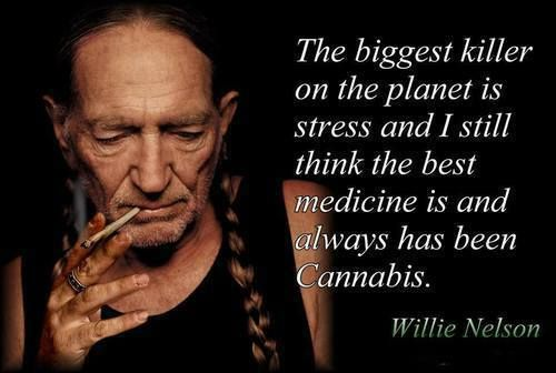 The biggest killer on the planet is stress and I still think the best medicine is and always has been Cannabis